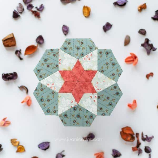 Chocolate de naranja patchwork quilt kit rosetas-2